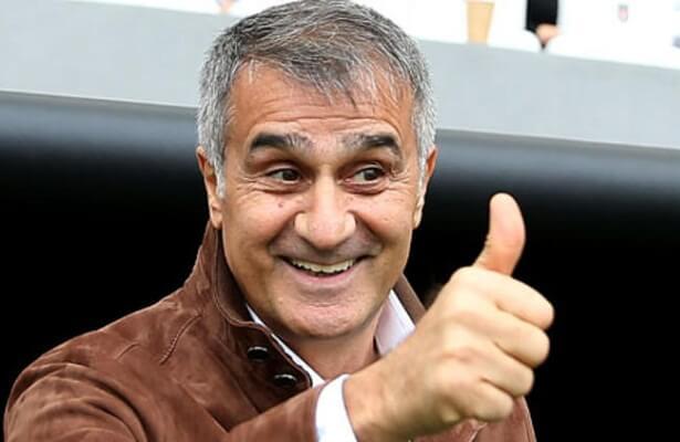Senol Gunes confirmed as Turkey coach