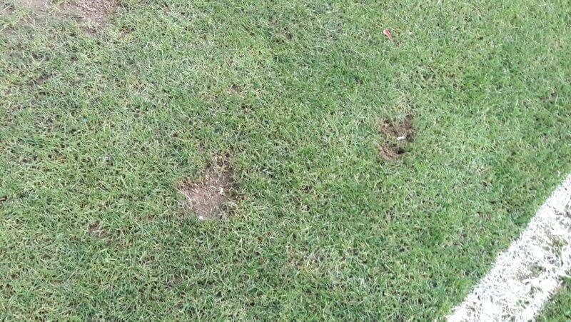 bursasporstadiumgrass